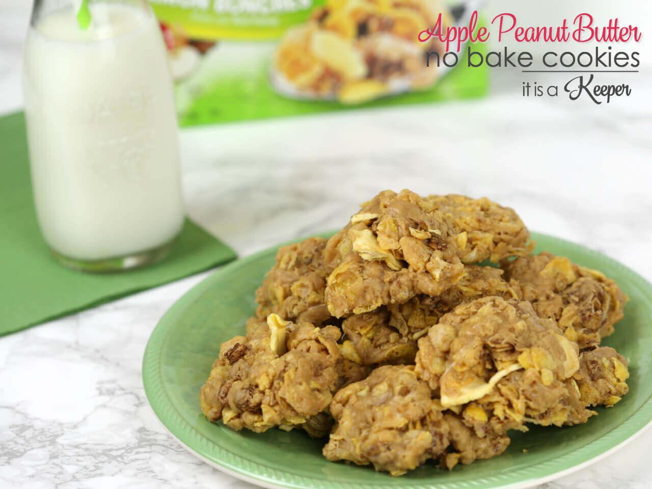 Apple Peanut Butter No Bake Cookies | It Is a Keeper